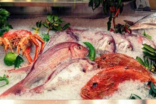 5 Fischsorten, die du vermeiden solltest