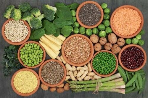 Die wichtigsten Proteinquellen bei einer veganen Ernährung