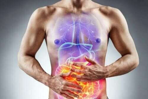 Reizdarm-Syndrom - Abbildung des Darmes