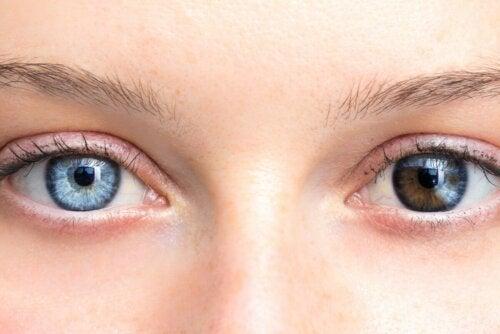 Wahrheiten oder Mythen über die Augenfarbe