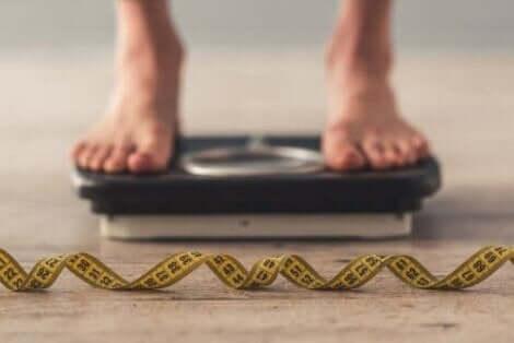 Der Verzicht auf Fette hat keinen Einfluss auf die Gewichtsabnahme