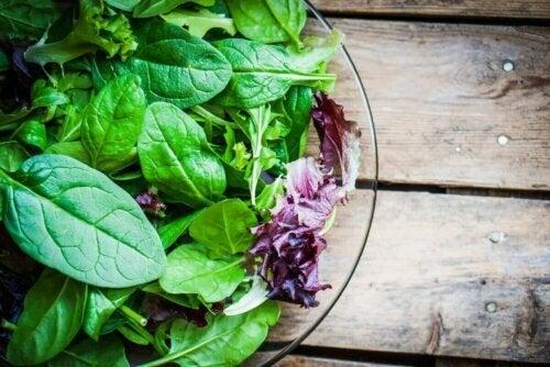 Veganer haben ein höheres Risiko, einen Nährstoffmangel zu erleiden
