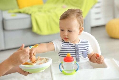 feste Babynahrung einführen