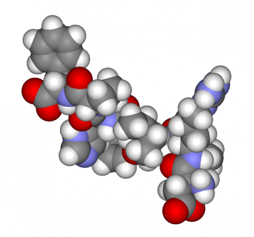 Androgen tragen zu Akne Conglobata bei