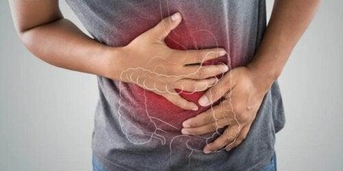 Richtige Ernährung bei entzündlichen Darmerkrankungen
