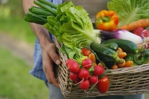 Korb mit Gemüse: natriumarme Lebensmittel