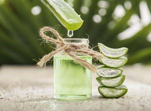 Nutze Aloe Vera und ätherisches Teebaumöl zur Behandlung eines Nietnagels