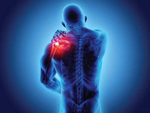 Spondyloarthropathien: Wissenswertes