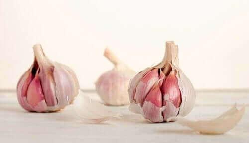 Knoblauch für Kurkuma-Knoblauch-Mayonnaise