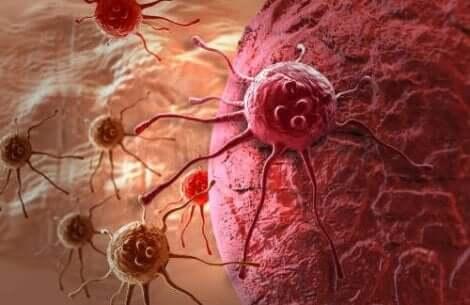 Prävention von Krebs