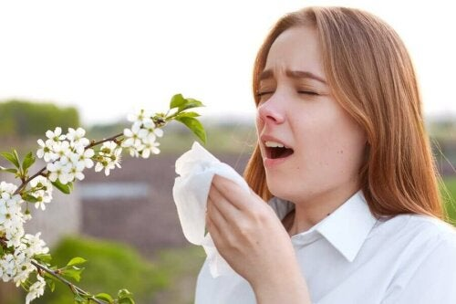 Im Frühling beginnt die Zeit der Pollenallergie