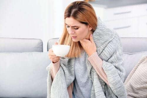 Thymian gegen Bronchitis und Atembeschwerden