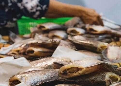 Die Symptome unterschiedlicher Arten einer Fischvergiftung
