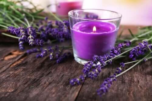 So bastelst du einen dekorativen Kerzenhalter mit Lavendel