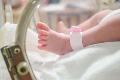 Auslöser für eine Frühgeburt - Baby im Brutkasten