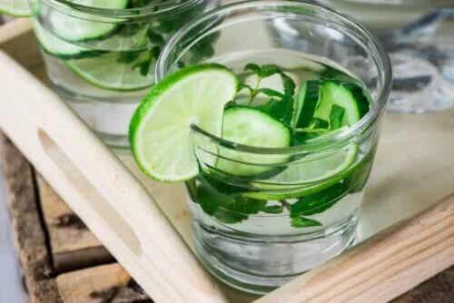 Detox-Wasser: 2 Vorteile und Mythen