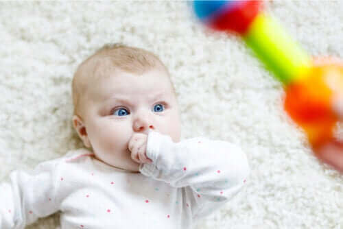 Babys fixieren häufig Objekte und Menschen - weißt du, warum?