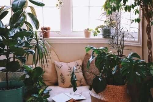 Entspannungsecke zu Hause einrichten: Einige Ideen