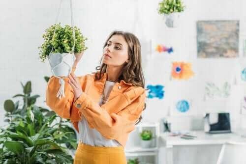 Hängende Pflanzgefäße: Kreative Recyclingideen zum Selbermachen