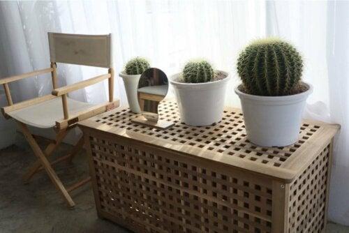 Entspannungsecke - Stuhl neben einer Truhe mit Kakteen