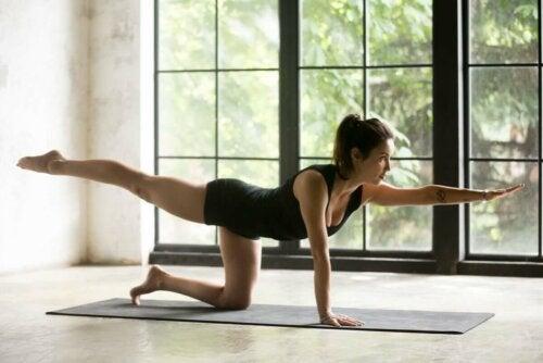 Vogel-Hund-Übung - Frau beim Yoga