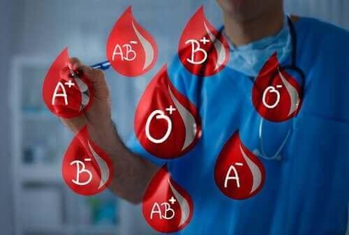 Blutgruppen: Blut spenden und erhalten