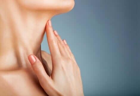 Anatomie des Halses