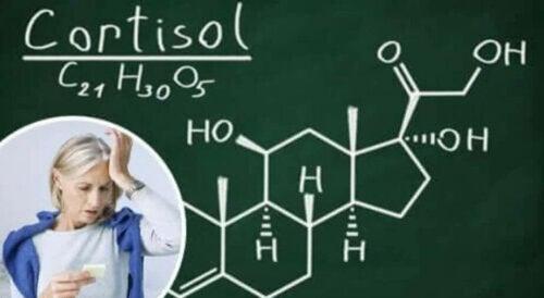 Cortisol, das wohl bekannteste aller Stresshormone