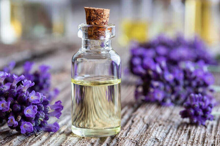 Lavendelöl zur Linderung von Bienenstichen