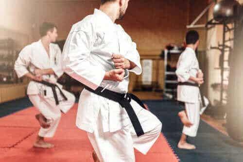 Der Unterschied zwischen Karate und Taekwondo