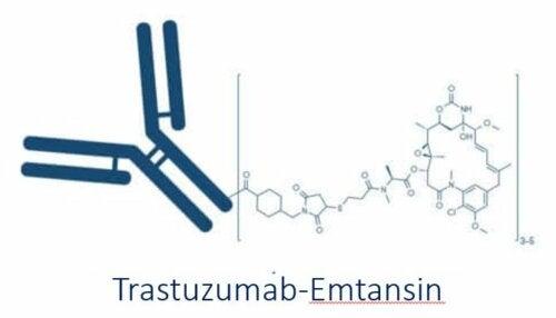 Trastuzumab zur Therapie von HER2-positivem Brustkrebs