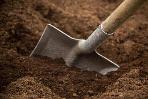 Arten von Gartenböden und ihre Eigenschaften