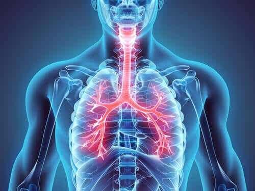 Welt-Asthma-Tag: So lässt sich diese Erkrankung kontrollieren