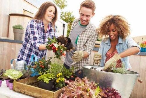Keine Freunde: 3 Freunde beim gemeinsamen Gärtnern