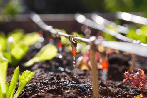 Bewässerungssysteme: 4 Arten und deren jeweilige Merkmale