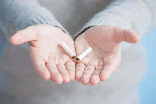 Cannabis und Tabak: Die Wechselwirkungen und wie du sie vermeidest